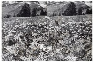 Collage #88,2015. (Frente detalle).Retablo.