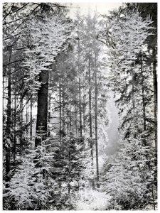 Collage #90, 2015. (Frente). Collage, papel, hilo. 27,5 x 21 cm.