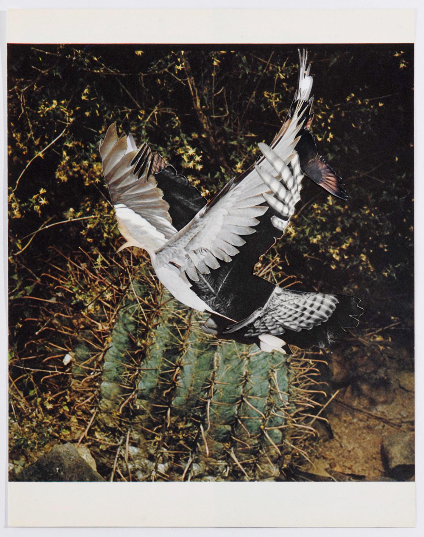 Collage#17, 2010. (Frente). Collage,papel, hilo. 26,5 x 23,5 cm.