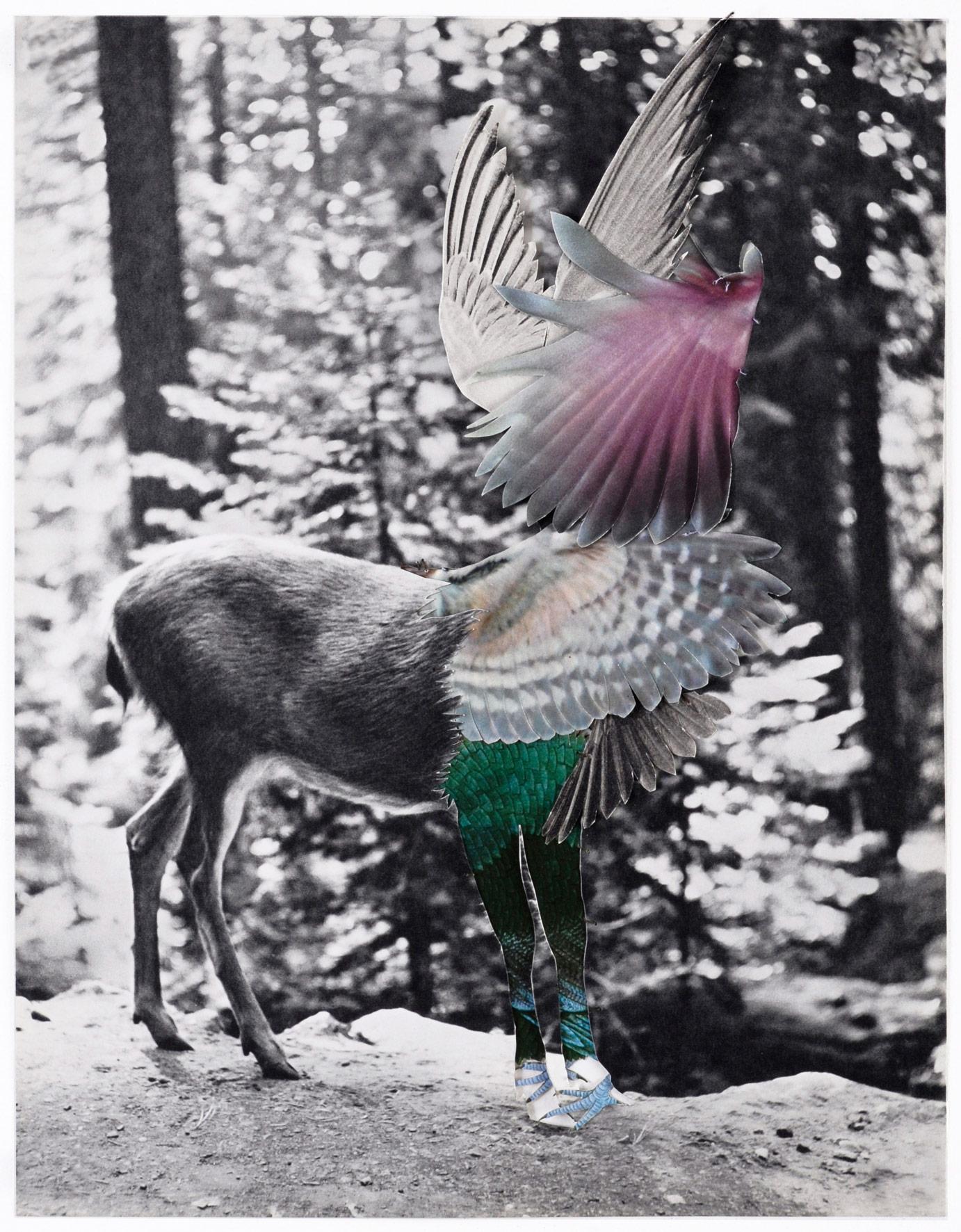 Collage#31, 2010. (Frente). Collage,papel, hilo. 31 x 24 cm.