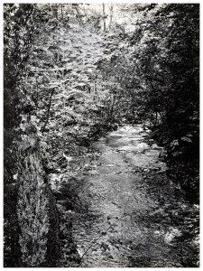 Collage #92, 2015. (Frente). Collage, papel, hilo. 27,5 x 21 cm.