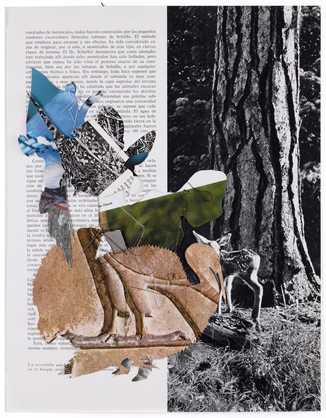 Collage#31, 2010. (Dorso). Collage,papel, hilo. 31 x 24 cm.