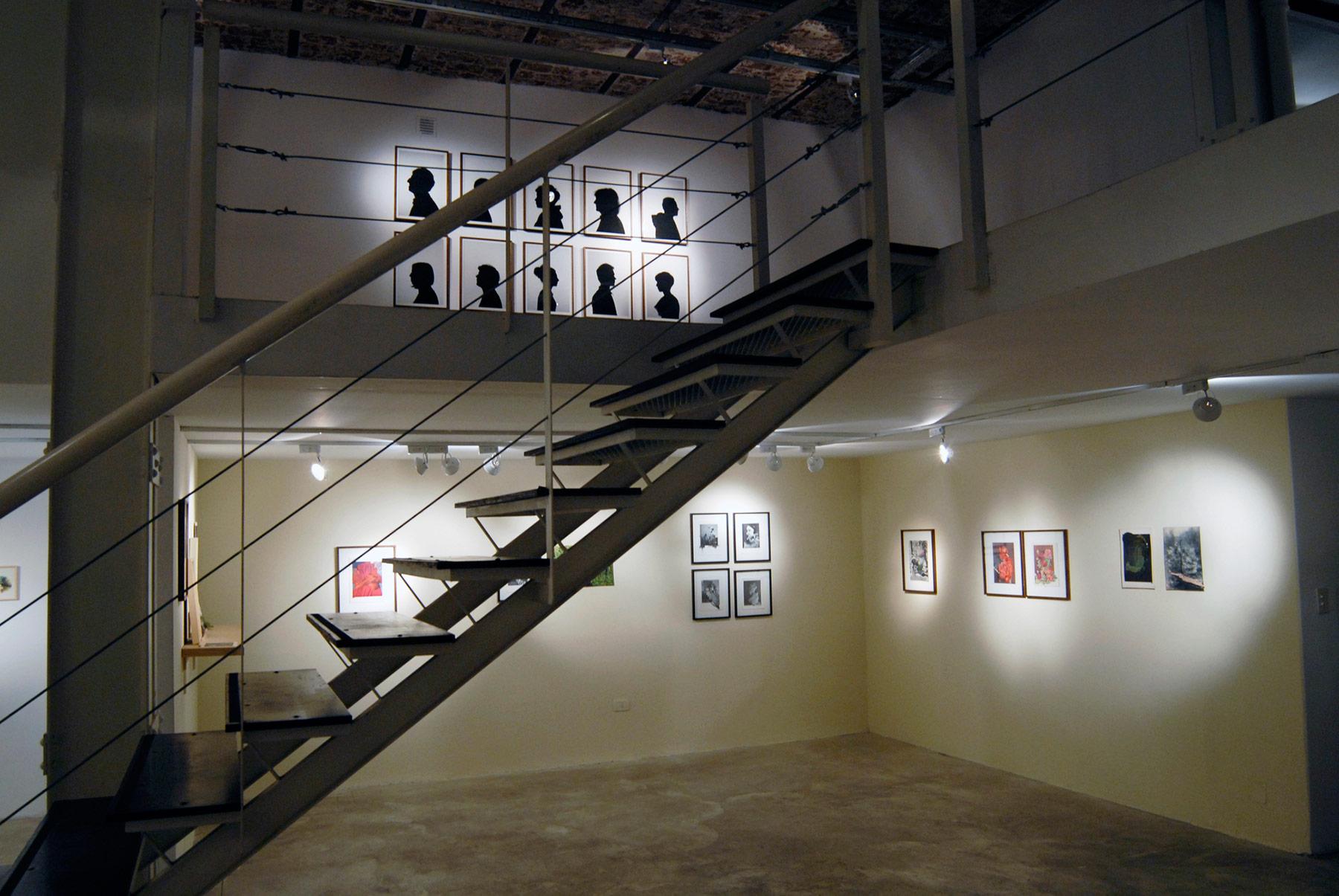 Reproducción, 2010. Vista general, galería Zavaletalab.