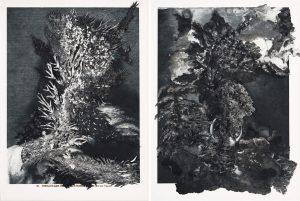 Collage #85. 2014. (Frente lámina 5 y 6)