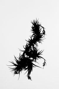 Silueta #009. 2014. Fotografía, impresión giclée. 56 x 40 cm.
